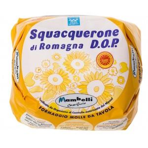 squacquerone-di-romagna-dop-al-sale-marino-integrale-350g