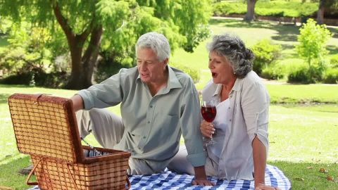 764813093-picnic-strawberry-red-wine-basket-receptable
